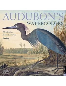 Audubon's Watercolors 2019 Wall Calendar by Andrews Mc Meel Publishing