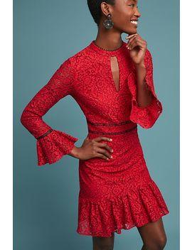 Shoshanna Kensington Lace Dress by Shoshanna