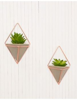 Umbra Set Of Two Concrete Wall Planters by Umbra