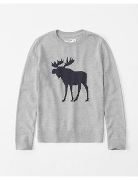 Intarsia Crewneck Sweater by Abercrombie & Fitch