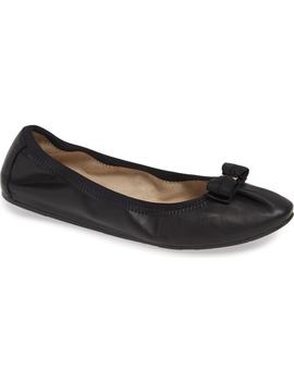 My Joy Ballet Flat by Salvatore Ferragamo