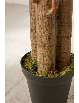 Dracena 5 Ft Potted Faux Tree by Urban Outfitters