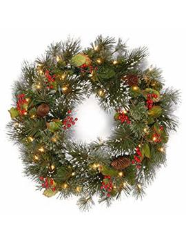 National Tree 24 Inch Wintry Pine Wreath With Cones, Red Berries, Snowflakes And 50 Battery Operated White Led Lights (Wp1 300 L 24 W B1) by National Tree Company
