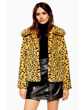 Cheetah Print Faux Fur Coat by Topshop