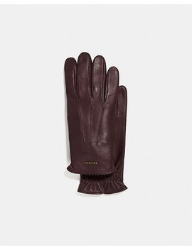 Tech Napa Glove by Coach