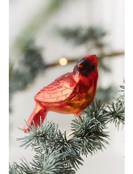 Cardinal Glass Clip Ornament by Anthropologie