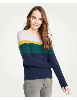 Colorblock Crew Neck Pullover by Ann Taylor