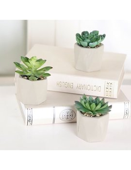 Mainstays Set Of 3 Cement Geometric Succulents by Mainstays