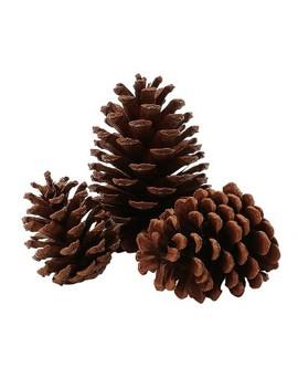 Artificial Christmas Scented Pinecones 15ct   Wondershop™ by Wondershop