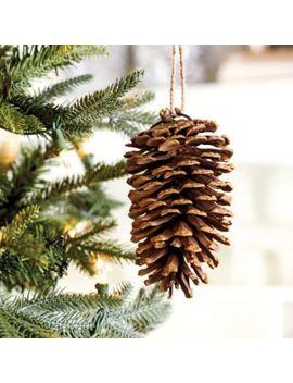 Longleaf Pinecone Ornaments   Set Of 6 by Ballard Designs