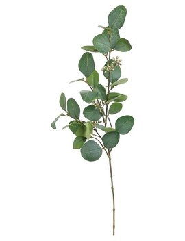 Three Posts Silver Dollar Eucalyptus Stem & Reviews by Three Posts