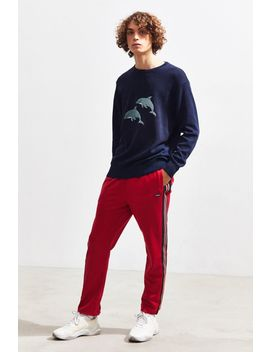 Barney Cools Dolphin Crew Neck Sweater by Barney Cools