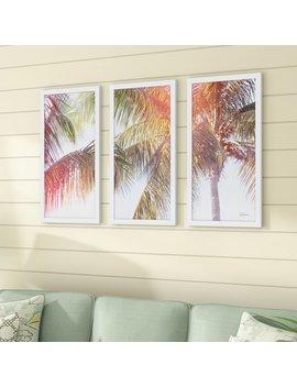Bay Isle Home 'dream Palm Iii' Acrylic Painting Print Multi Piece Image On Glass by Bay Isle Home