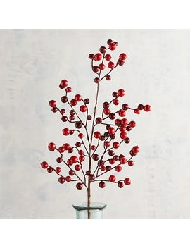 Glittered Red Berry Stem by Pier1 Imports