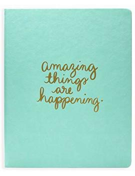 "Eccolo Dayna Lee Collection Mint""Amazing Things"" 8x10"" Gold Embossed Hardcover Journal/Notebook, Acid Free Lined Pages by Eccolo World Traveler"
