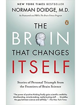 The Brain That Changes Itself: Stories Of Personal Triumph From The Frontiers Of Brain Science (James H. Silberman Books) by Norman Doidge
