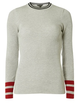Grey Striped Tip Ribbed Jumper by Dorothy Perkins