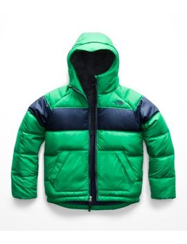 Boys' Moondoggy 2.0 Down Hoodie by The North Face