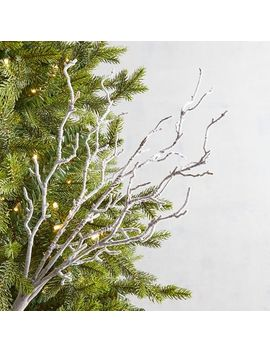 Frosty Branch Tree Pick by Pier1 Imports