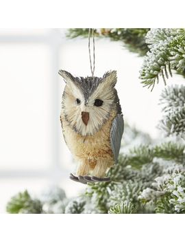 Silver Buri Owl Ornament by Crate&Barrel