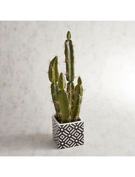 Faux Cactus Arrangement In Geo Printed Pot by Pier1 Imports