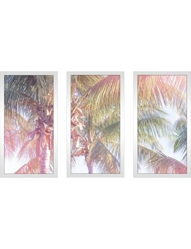 Bay Isle Home 'dream Palm Ii' Acrylic Painting Print Multi Piece Image On Glass by Bay Isle Home