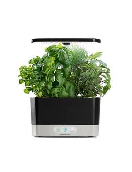 Aero Garden Harvest With Gourmet Herbs 6 Pod Seed Kit by Aero Garden