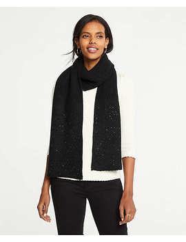 Embellished Blanket Scarf by Ann Taylor