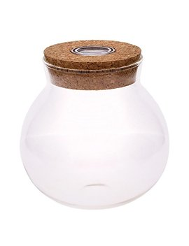Wxlaa 11cm Round Glass Jar Terrarium With Colorful Led Light Cork by Wxlaa
