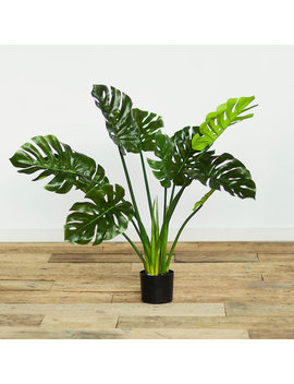 Faux Philodendron by Terrain