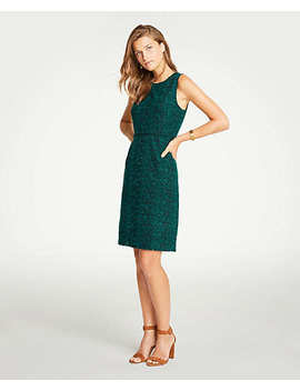 Embroidered Lace Sheath Dress by Ann Taylor