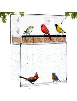 Amazing Window Bird Feeder With Bottom Swing – Acrylic Bird Feeder With 4 Suction Cups – Sturdy Outdoor Feeder For Finch, Cardinal, Blue Bird, Wild Birds – Large Dimensions For Optimal Bird Admiring by Patio Agent