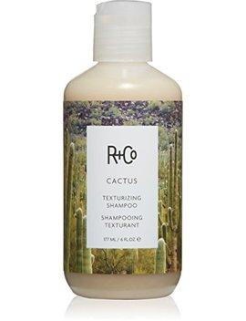 R+Co Cactus Texturizing Shampoo, 6 Fl. Oz. by R+Co