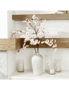 Cherry Blossom Stems   Set Of 3 by Ballard Designs
