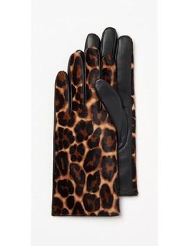 Camilla Leopard Glove by J.Mc Laughlin