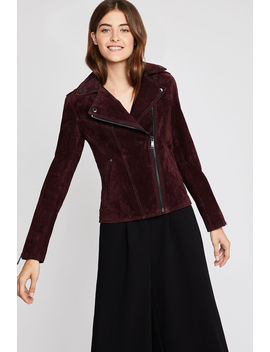 Zip Sleeve Suede Jacket by Bcbgeneration