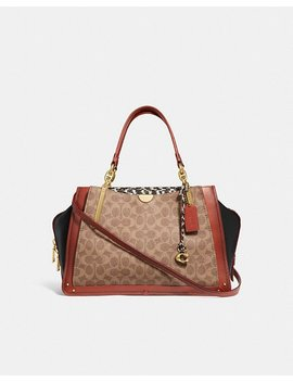 Dreamer 36 In Signature Canvas With Snakeskin Detail by Coach