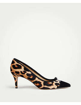 Maisie Velvet Bow Pumps by Ann Taylor