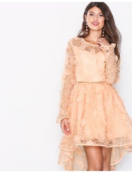 Lace Skater Dress by True Decadence