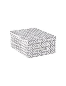Our Synchronicity Bigso Storage Boxes by Container Store
