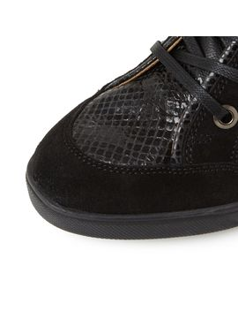D Carum C Snake Print Hi Top Trainers by Geox