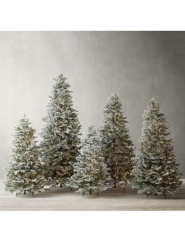 Frosted Faux Shasta Starlit Tree With Illuminate Technology by Restoration Hardware