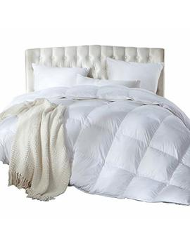 Luxurious Full / Queen Size Siberian Goose Down Comforter, Duvet Insert, 1200 Thread Count 100 Percents Egyptian Cotton, 750+ Fill Power, 60 Oz Fill Weight, 1200 Tc, White Solid by Egyptian Bedding