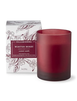 Williams Sonoma Winter Berry Candle by Williams   Sonoma