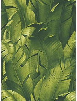Next Wall Tropical Banana Leaves Peel And Stick Wallpaper. (Green) by Next Wall