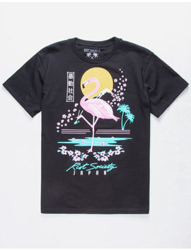 Riot Society Flamingo Blossom Boys T Shirt by Riot Society