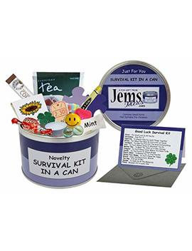 Good Luck Survival Kit In A Can. Humorous Novelty Fun Gift   Present & Card All In One. New Job, Leaving, Emigrating, Moving Away Etc. Customise Your Can Colour. (Purple/Lilac) by Survival Kit In A Can