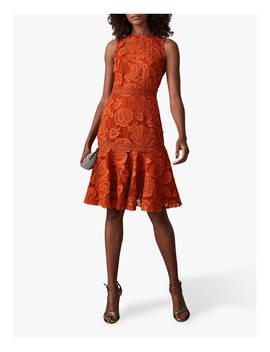 Reiss Adia Lace Panel Dress, Winter Orange by Reiss