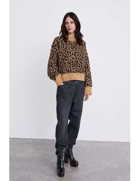 Animal Print Sweater  Sweaters Knitwear Woman by Zara