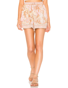 Jungle Flutter Shorts by Spell & The Gypsy Collective